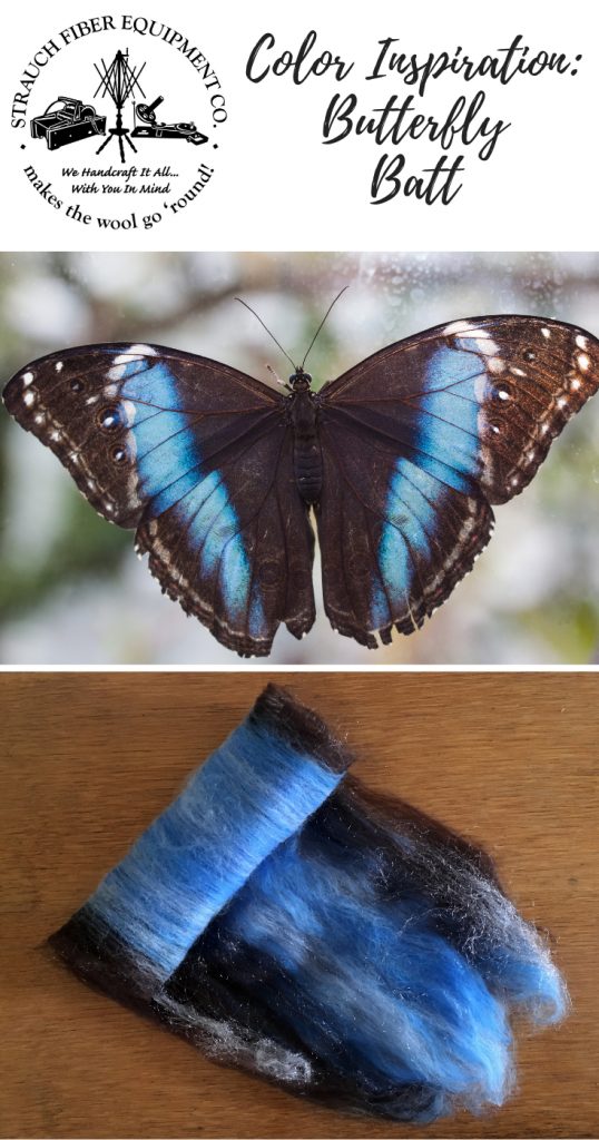 butterfly battPINTEREST
