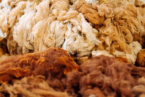 Macro close-up of raw alpaca fibers piled in a deposit